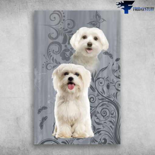 Great I Just Love Maltese White Pets Maltese Dog poster